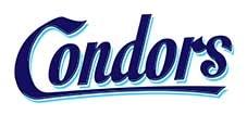 logo Sittard Condors